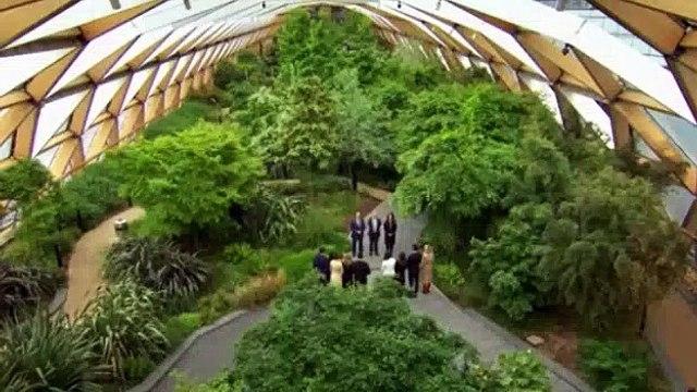 The Apprentice UK - Season 14 Episode 8 - Glasgow Art - video dailymotion