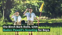 What is BOY SCOUT HANDBOOK? What does BOY SCOUT HANDBOOK mean? BOY SCOUT HANDBOOK meaning - BOY SCOUT HANDBOOK definition - BOY SCOUT HANDBOOK explanation