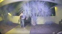 Muni d'un fusil d'assaut un homme sonne en pleine nuit chez une famille en Floride