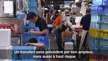 Le marché aux poissons de Tsukiji déménage: haro sur les rats
