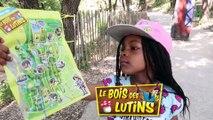 LES VACANCES COMMENCENT AU BOIS DES LUTINS à PEYPIN ! Parc d'attractions