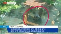 [단독]직접 CCTV 찾아 스토킹 신고…경찰은 나몰라라