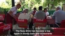 What is the secret to hungary's popular summer spritzer?