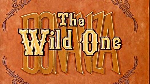 Bonanza The Wild One