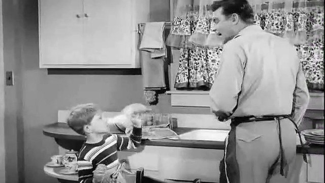 The Andy Griffith Show S01E23 - Andy and Opie Housekeepers