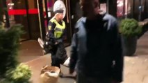 Incident Chinese Tourists vs Swedish Police