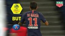 But Angel DI MARIA (76ème) / Paris Saint-Germain - AS Saint-Etienne - (4-0) - (PARIS-ASSE) / 2018-19
