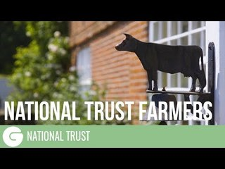 Meet the tenant beef farmers from the Blickling Estate in Norfolk | National Trust