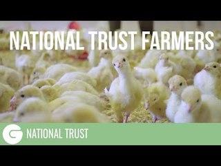 Local, seasonal, sustainable food | National Trust