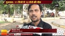 GujaratNews II 11 lions die within a span of few days in Gujarat's Gir forest