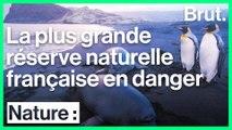 La plus grande réserve naturelle française