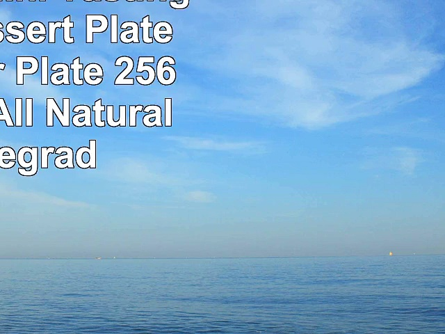 Bagasse Mini Tasting Plate Dessert Plate Appetizer Plate  256   Durable All Natural