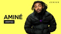 """Aminé """"DR. WHOEVER"""" Official Lyrics & Meaning 