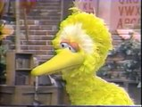 Classic Sesame Street - Maria and Luis Tell Big Bird They're Having a Baby
