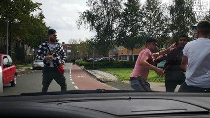 Wild animals crossing the road