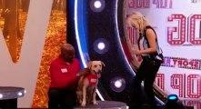 Sport Reliefs Top Dog S01 - Ep01 Heat 1 HD Watch