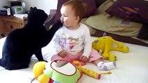 Birlikte Oynamak Komik Kediler Ve Bebekler - Sevimli Kedi