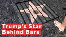 Trump's Hollywood Walk Of Fame Star Put Behind Bars