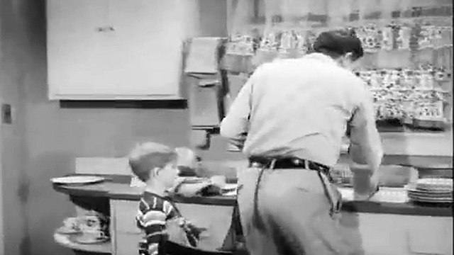 The Andy Griffith Show S01E23 Andy and Opie Housekeepers