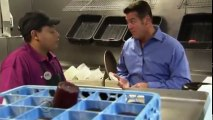 Undercover Boss (US) S05 - Ep09 Undercover Boss Busted! HD Watch