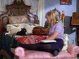 Sabrina, The Teenage Witch S02E06 Sabrina The Teenage Boy