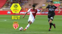 But Radamel FALCAO (27ème) / AS Monaco - Nîmes Olympique - (1-1) - (ASM-NIMES) / 2018-19