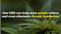 Buy Cannabis CBD For Dementia