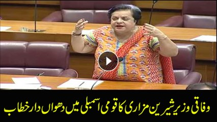 Federal Minister Shireen Mazari talks to NA