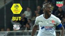 But Prince-Désir GOUANO (66ème) / Amiens SC - Stade Rennais FC - (2-1) - (ASC-SRFC) / 2018-19
