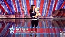 Animals Got Talent - Pip and Puppy on Britains Got Talent 2011 Audition