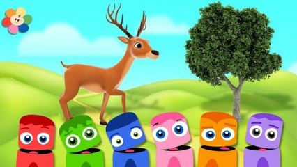 GooGoo Baby New Series - LA LA LAND Coloring With ColorCrew For Babies & Kids