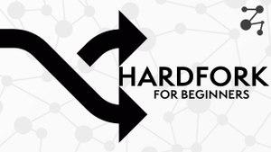 Blockchain Forks for Beginners | Blockchain Central