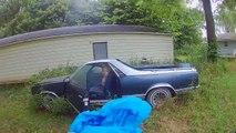 Il découvre un énorme nid de frelons dans une vieille voiture