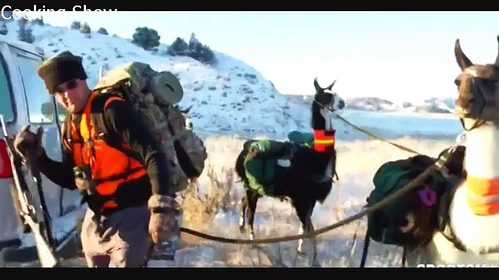 MeatEater – S01E05 – Brotherhood Badlands and Pack (Llamas Montana Mule Deer)