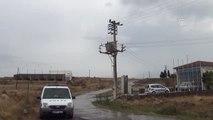 Elektrik Akımına Kapılan Koyunlar Telef Oldu - Balıkesir