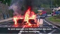 Pyrénées: blocage des routes contre l'arrivée des ours