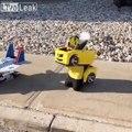Transformers - ces enfants ont le meilleur déguisement du monde !