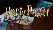 Lifeprint Harry Potter
