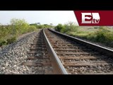Diputados aprueban Ley reglamentaría del Servicio Ferroviario  / Mario Carbonell
