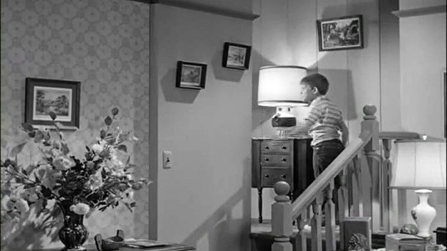 The Andy Griffith Show S03 E04 - Andy and Opie-Bachelors