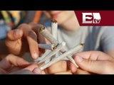 Consumidores de marihuana son tratados como delincuentes / Excélsior informa