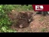 Encuentran 11 cuerpos en fosas clandestinas en Michoacán/ Pascal