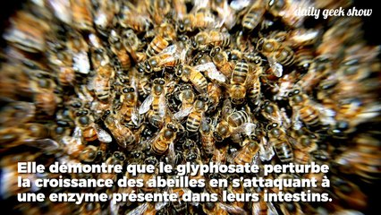 Glyphosate Resource | Learn About, Share and Discuss Glyphosate At