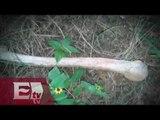 Preocupación por los cuerpos encontrados en las fosas clandestinas / Titulares de la noche