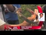 Piden esclarecer a quién pertenecen los cuerpos hallados en fosas de Iguala / Pascal Beltrán
