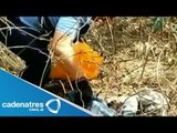 Van 23 cadáveres hallados en tres fosas clandestinas en Morelos