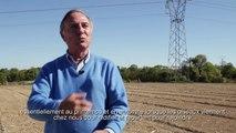 Partenariat LPO et RTE - Interview d'Allain Bougrain Dubourg, président de la LPO (Ligue pour la Protection des Oiseaux)