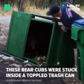 Firefighters helped bear cubs that got trapped in a garbage bin to escape.via HuffPost