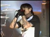 Red hot chili peppers - cant stop live