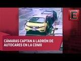 Captan a ladrón de autopartes en la Roma Sur
